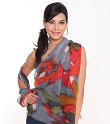 Manufacturer of Screen/Hand Printed Stoles in Delhi, India