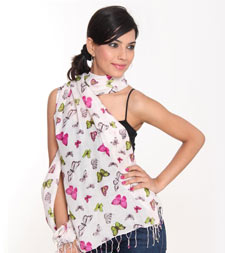 Dealer of Screen/Hand Printed Stoles in Delhi, India