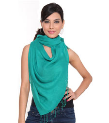 Supplier of Plain Stoles in Delhi, India